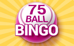 75 Ball Bingo Cover