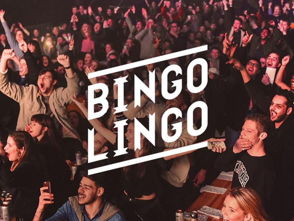 Bingo Lingo Cover
