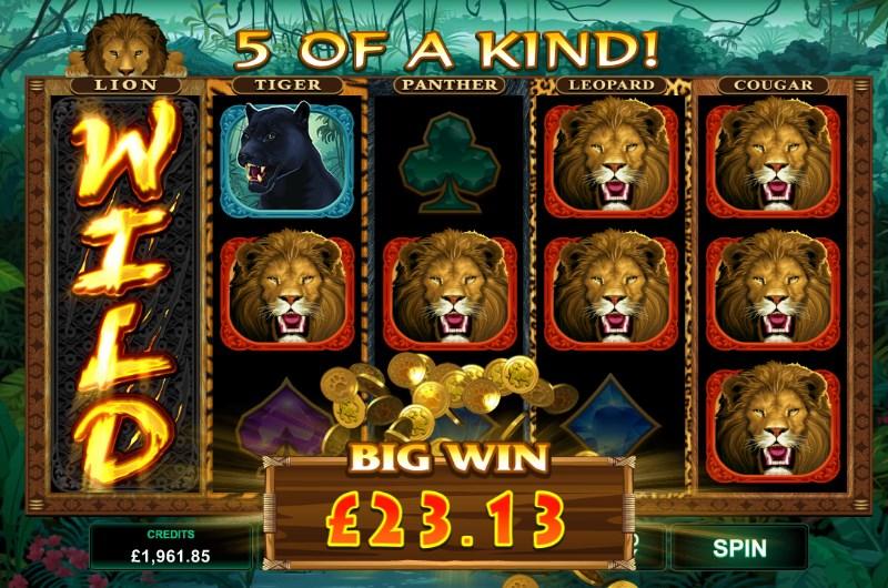Exotic Cats Slot Online