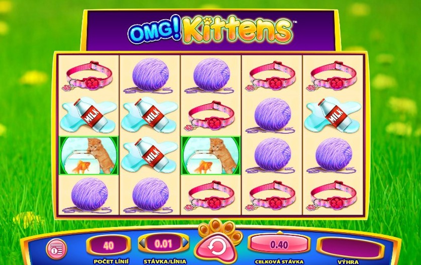 OMG Kittens Slots Game
