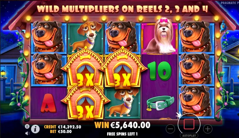 The Dog House Megaways Slots Reel