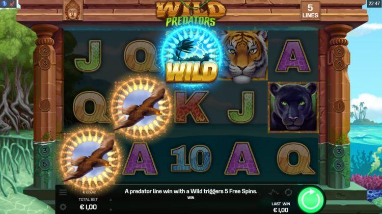 Wild Predators Slot Game Play