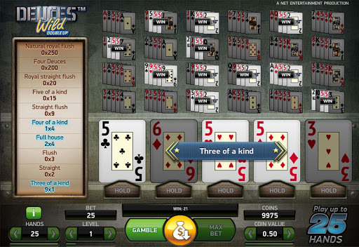 Deuces Wild Double Up Slots Game