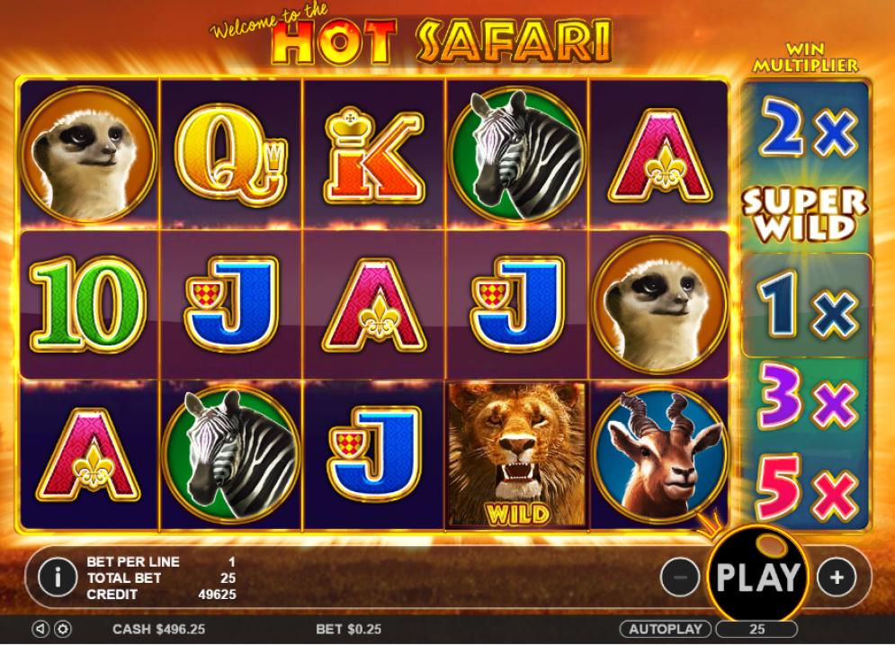 Hot Safari Slot Gameplay