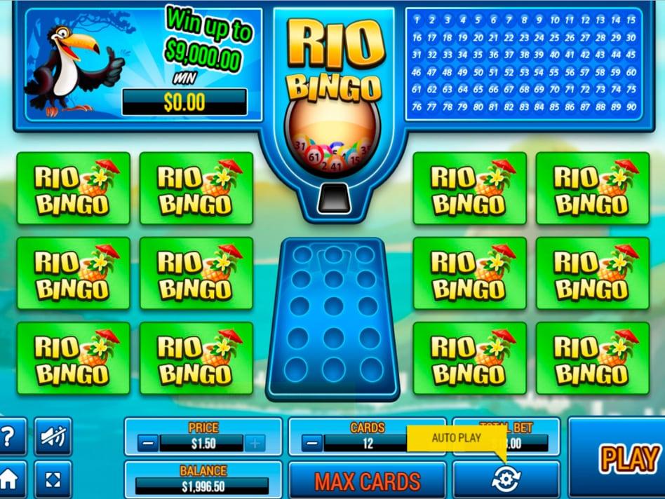 Rio Bingo Game