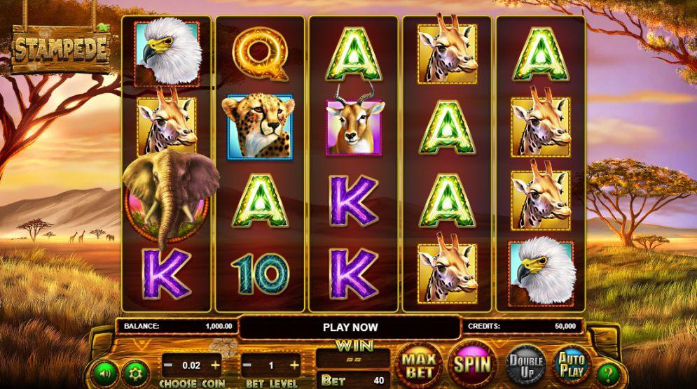 Stampede Jackpot Slot