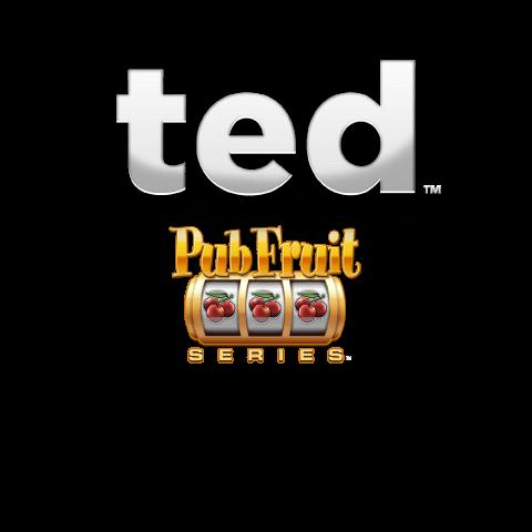 Ted Pub Fruit Series Slot Banner