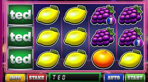 Ted Pub Fruit Series Slot Gameplay