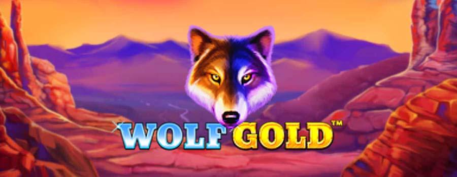 Wolf Gold Umbingo